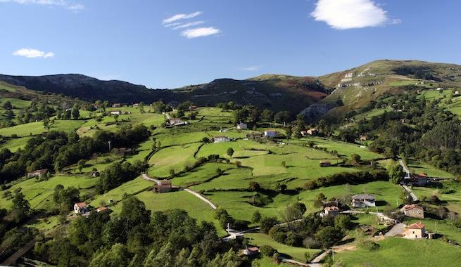 Cantabria tiene un tremendo potencial de biomasa