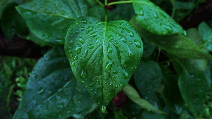 energia-lluvia