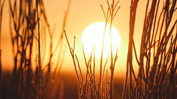 luz-solar