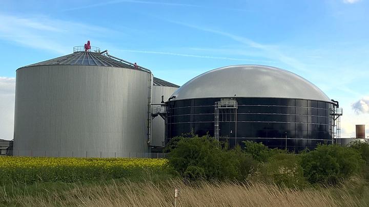 algas-biogas
