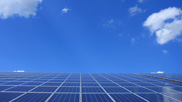 arbol-solar